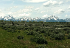 Six Things in Wyoming You Must See For Yourself